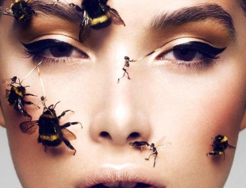 По 5 млн. лв. годишно получават пчеларите от евросубсидии