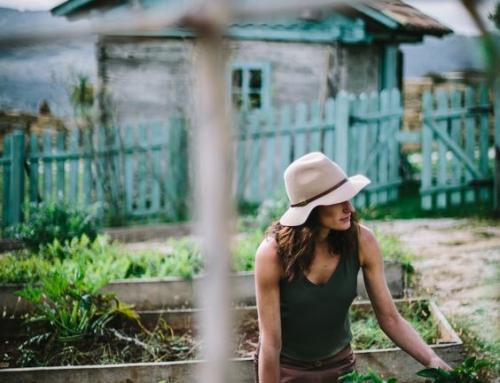 Покана по Хоризонт 2020: Създаване на възможност на консултантите в земеделието да подготвят фермерите за цифровата ера